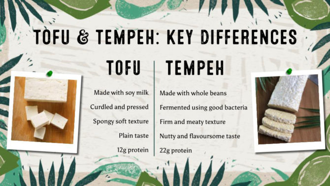 Tofu Vs Tempeh: A list of key differences. Tofu is: made with soy milk, curdled and pressed, has a spongy soft texture, a plain taste and contains 12g of protein per serving. Tempeh is: made with whole beans, fermented using good bacterias, has a firm and meaty texture and a nutty taste, and contains 22g of protein per serving.